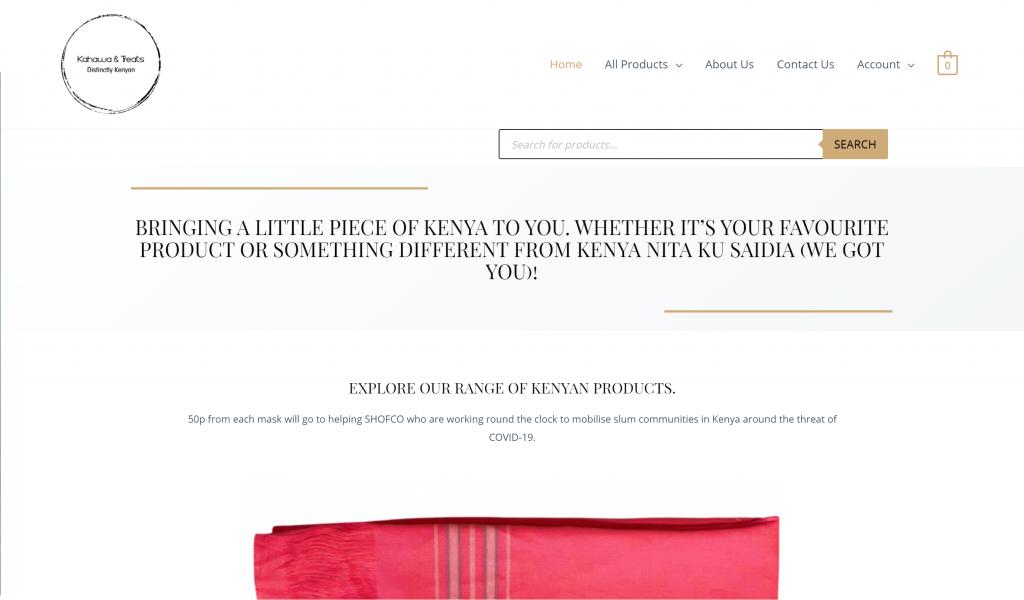 Virtual Canvas - website design